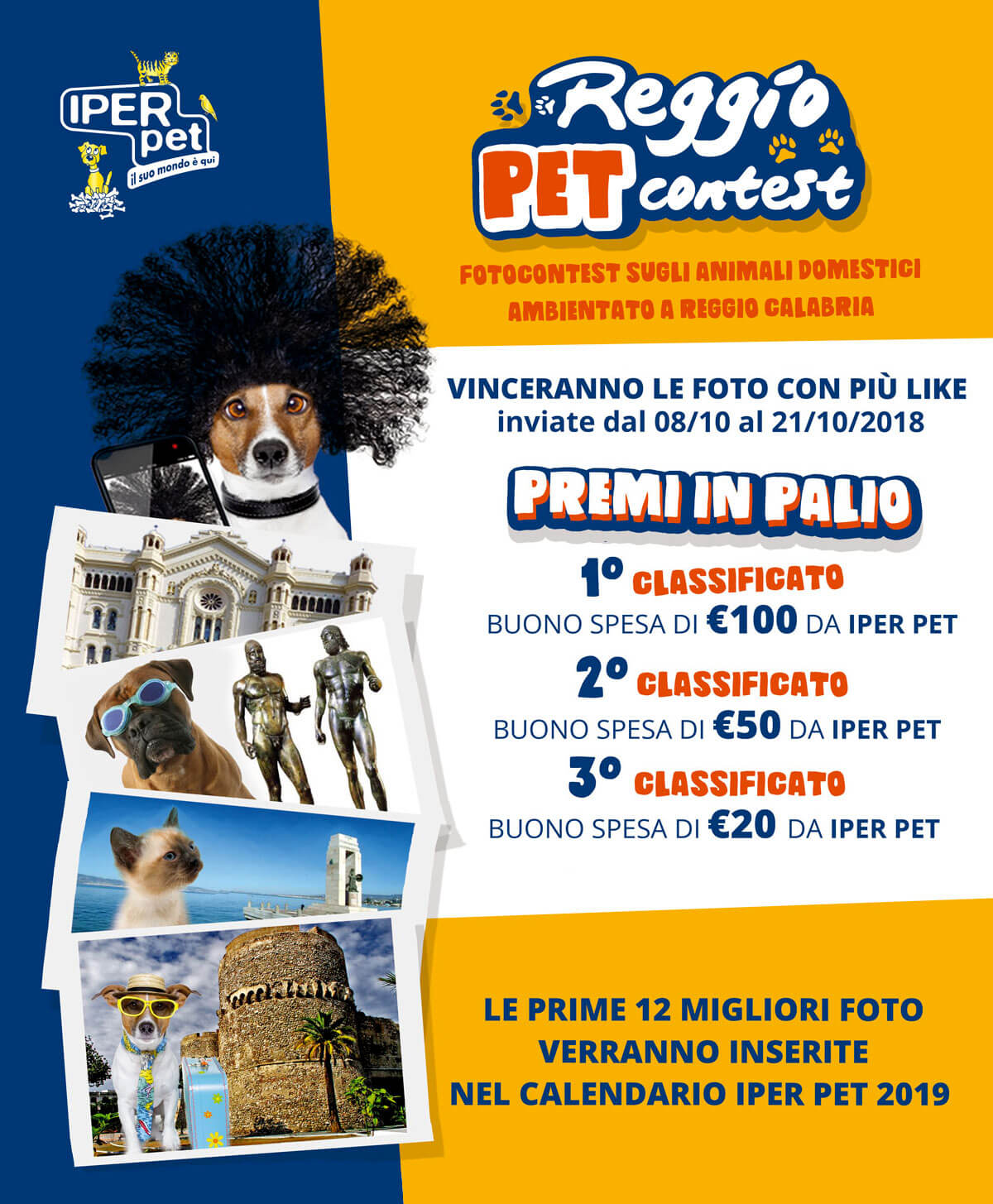 Iper Pet Reggio Pet Contest Fotografico