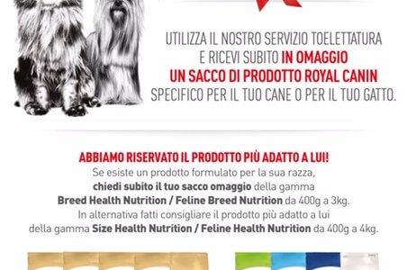 Promozione Toelettatura Iper Pet Reggio Calabria Royal Canin