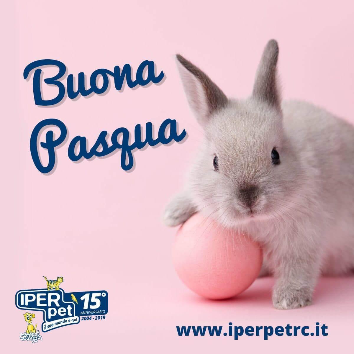 Iper Pet negozio di animali a Reggio Calabria augura buona pasqua