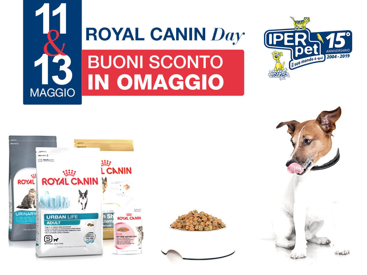 11 e 13 maggio giornata royal canin iper pet negozio di animali reggio calabria