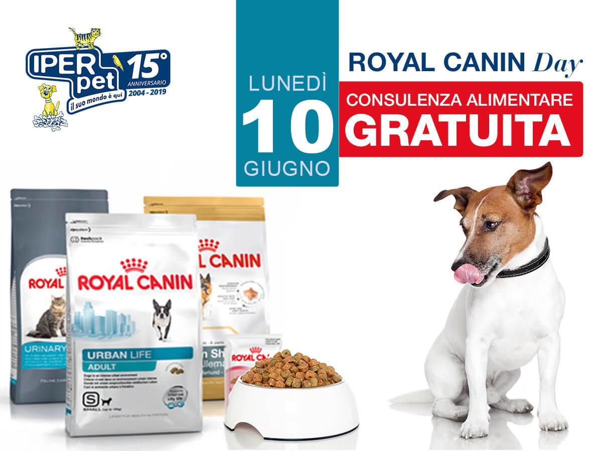 Lunedì 10 giugno royal canin day da Iper Pet negozio per animali Reggio Calabria