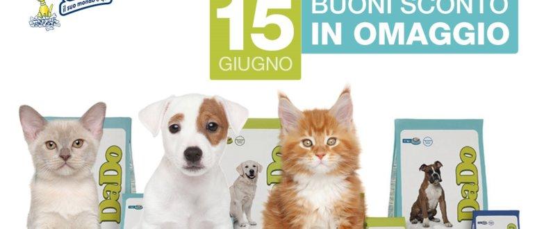 sabato 15 giugno dado day da iper pet negozio per animali reggio calabria
