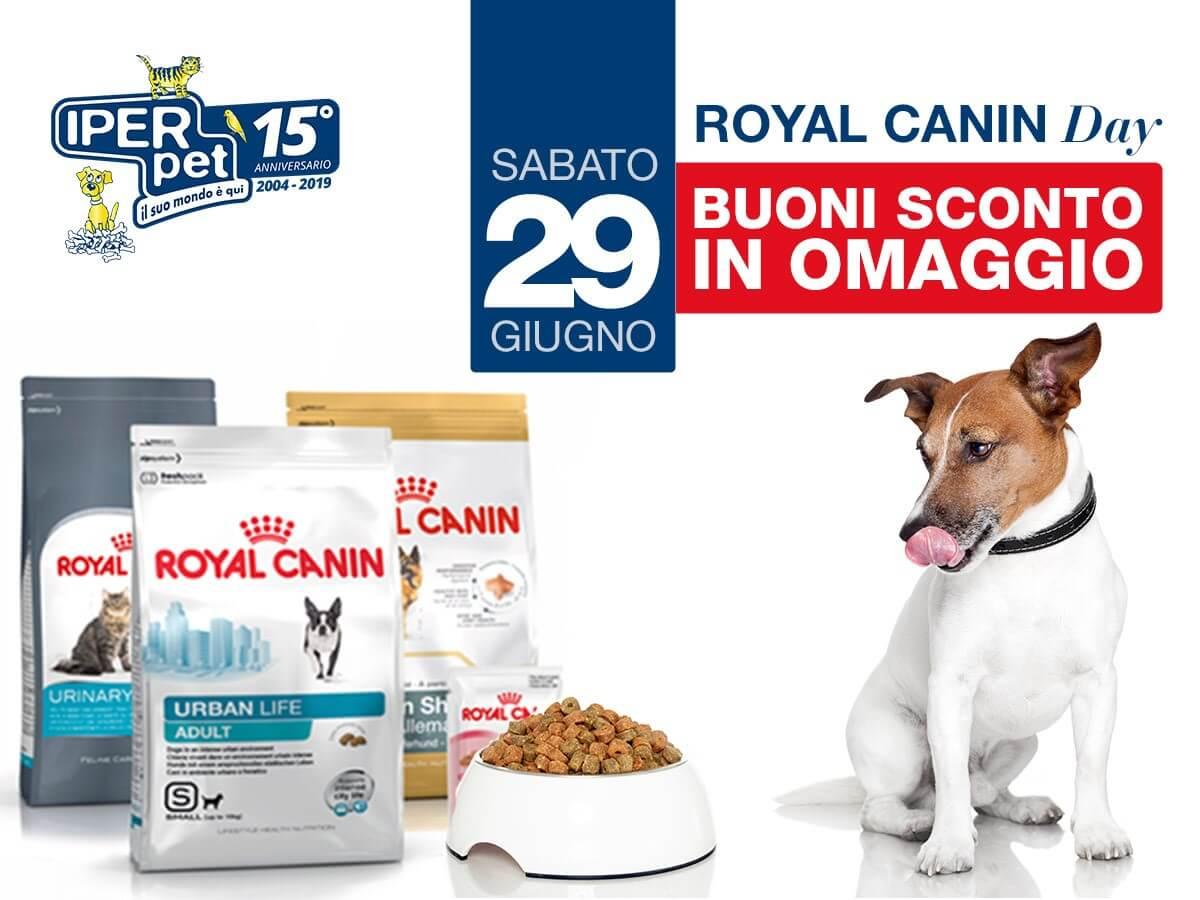 sabato 29 giugno royal canin day da iper pet negozio di animali reggio calabria