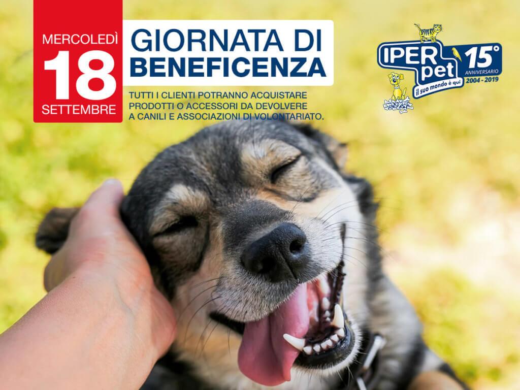 Mercoledì 18 settembre giornata di beneficenza per i canili e le associazioni di volontariato di Reggio Calabria