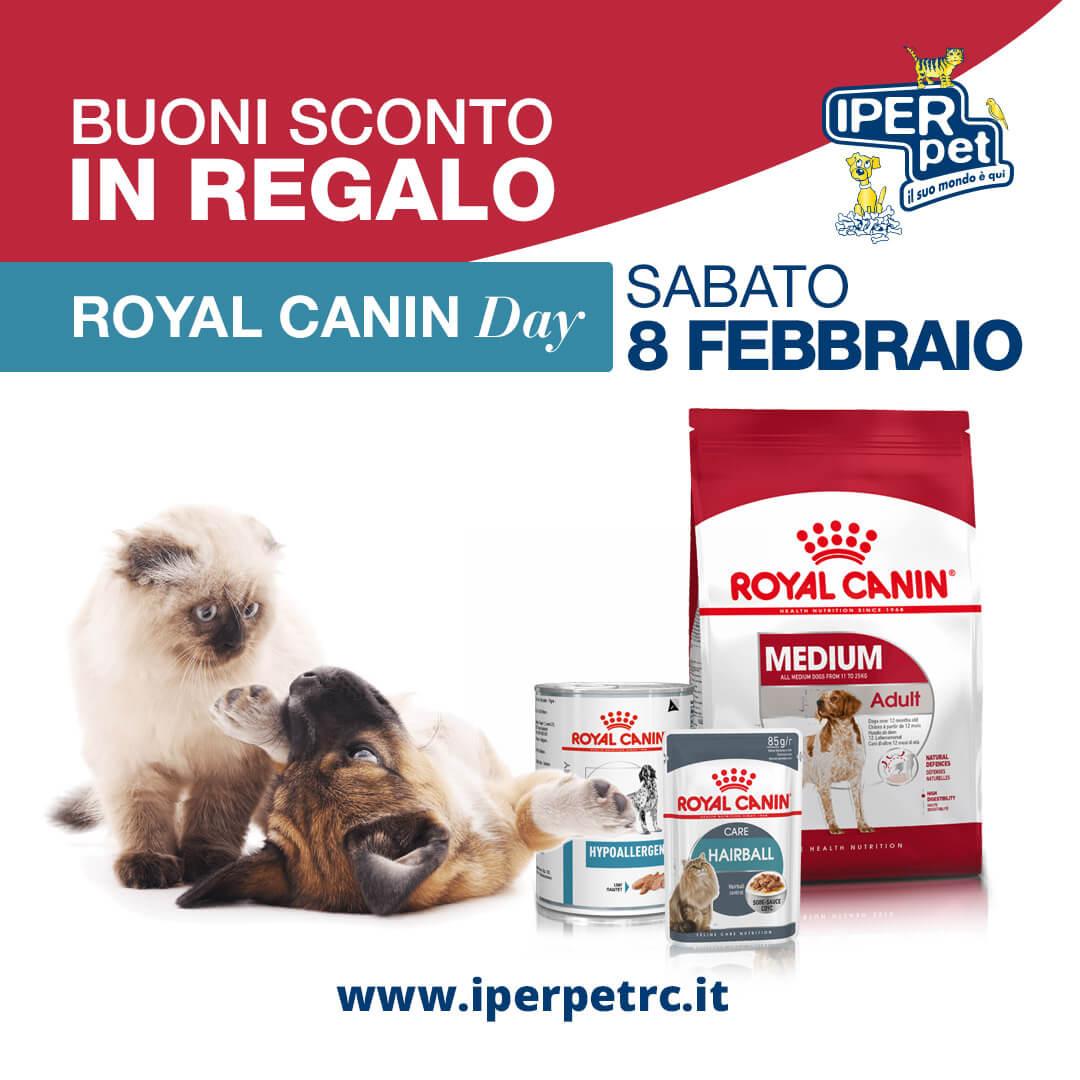 Sabato 8 Febbraio Royal Canin Day da Iper Pet negozio per animali Reggio Calabria